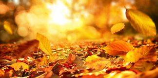 outono no hemisfério norte